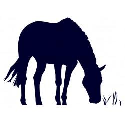 Samolepka na auto- kůň na pastvě