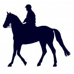 Samolepka na auto-jízda na koni 07