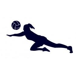 Samolepka na auto- volejbal