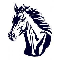 Koník- hlava koně- Samolepka na auto