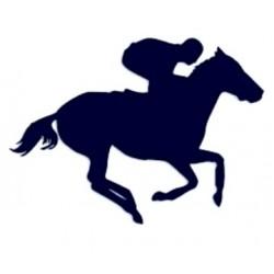 Samolepka na auto-jízda na koni- dostihy
