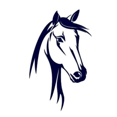 Samolepka na auto-hlava koně