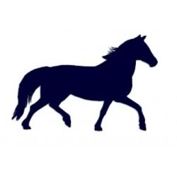 Samolepka na auto- silueta koně