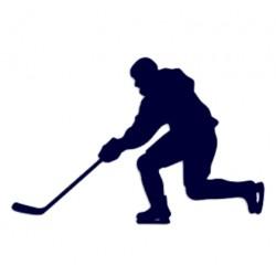 Samolepka na auto lední hokej
