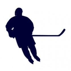 Samolepka na auto- silueta hokejisty