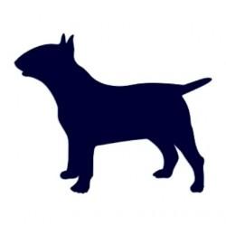 Samolepka na auto-pes v autě - Anglický bullteriér