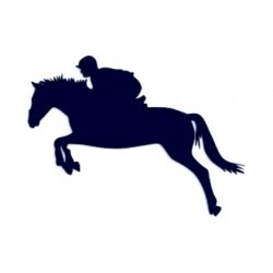 Samolepka na auto-jízda na koni- parkur