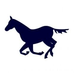 Samolepka na auto- silueta koně 03