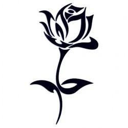 Samolepka na auto pro ženy- růže