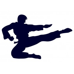 Samolepka na auto s motivem karate