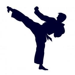 Samolepka na auto s motivem karate 01