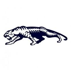 Samolepka na auto - tygr