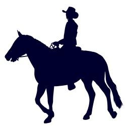 Samolepka na auto-jízda na koni 04