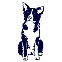 Border kolie- Samolepka na auto - pes v autě